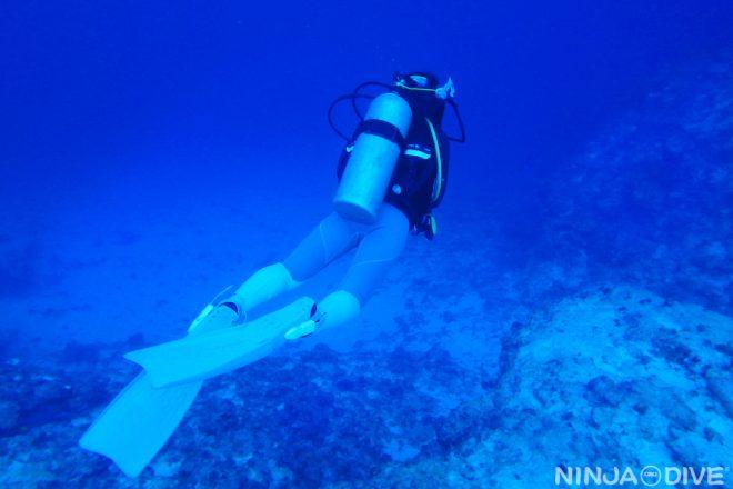 Fly underwater