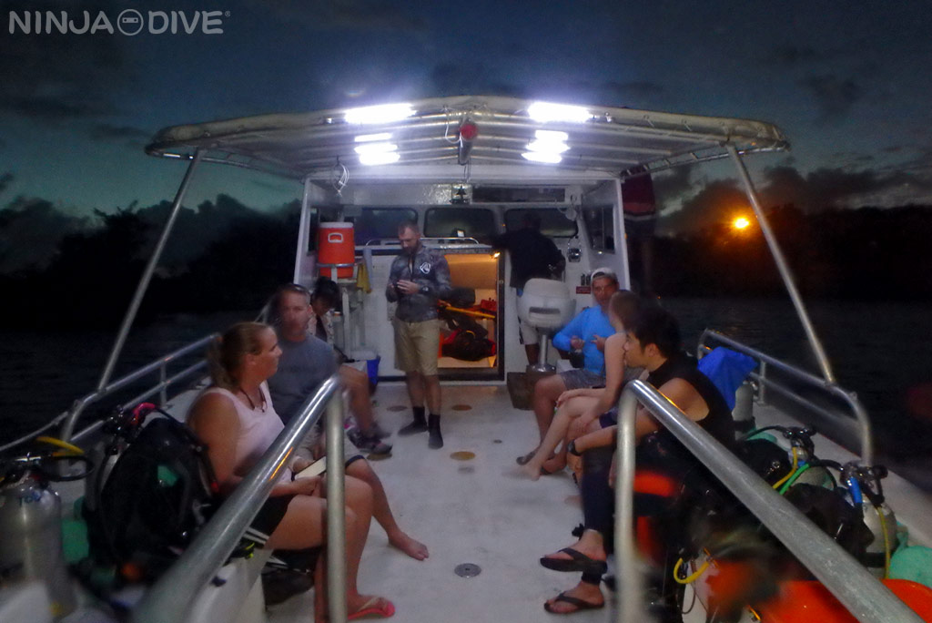 fundiving night