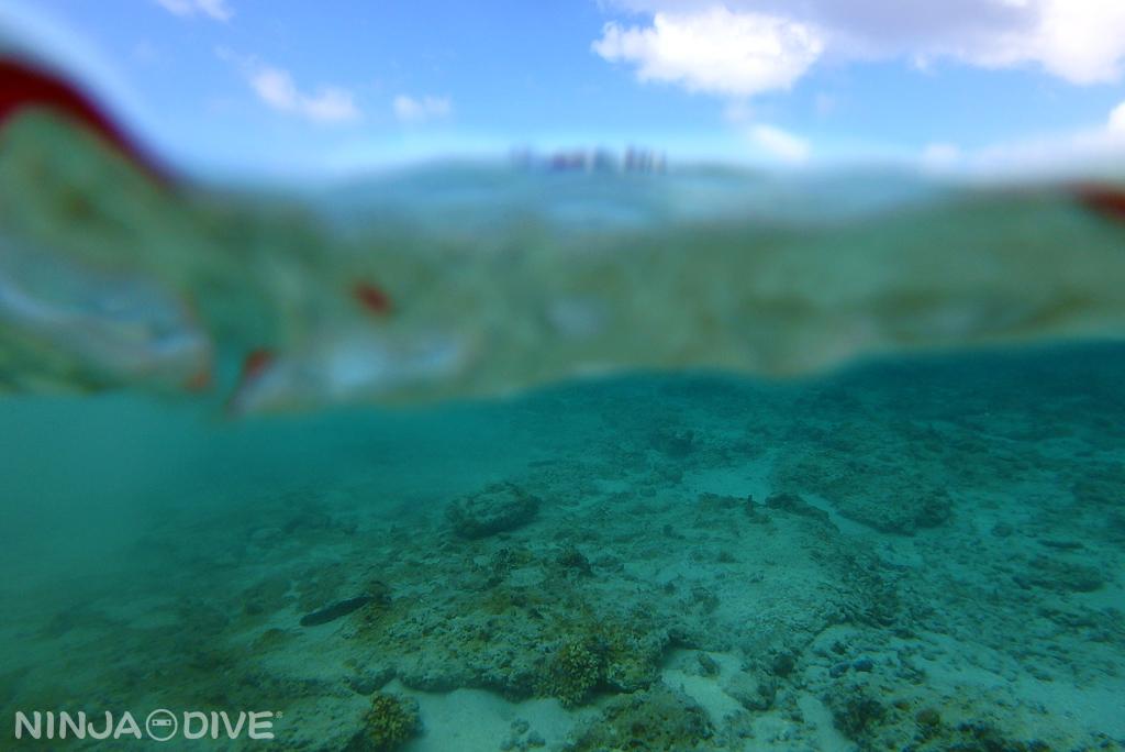 グアム 体験ダイビング ファンダイビング ビーチ
