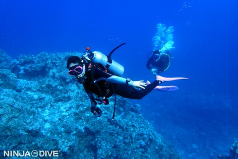 グアム南部 ファンダイビング ボートダイビング ハップルリーフ