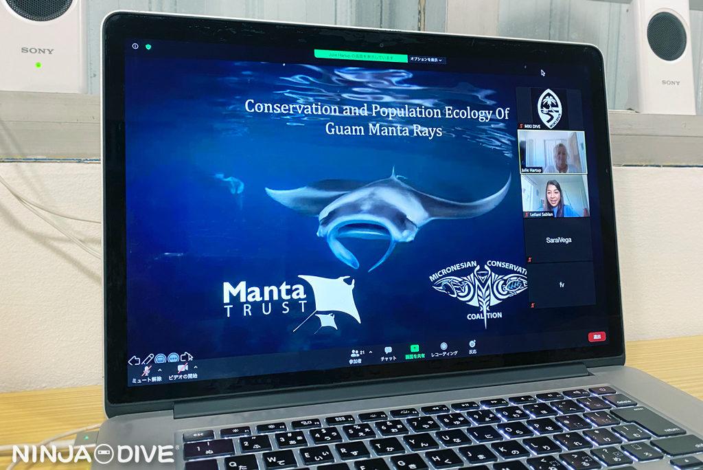 グアム マンタ 保護 個体群生態学 Conservation Population Ecology Manta